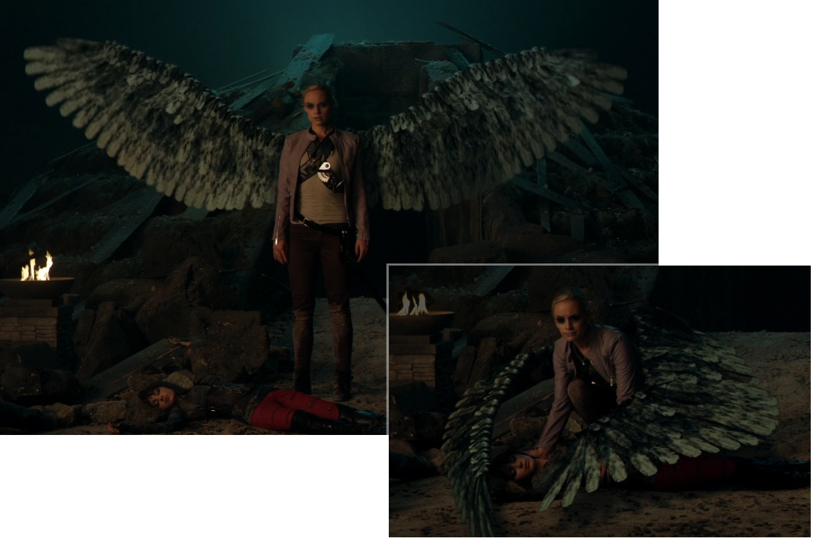 Tamsin's Wings
